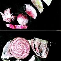 aus der Serie Fruchtschnitte, 1990